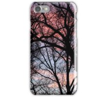 Cottonwood Sunset iPhone Case/Skin