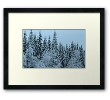 Swedish Forest In Winter III Framed Print