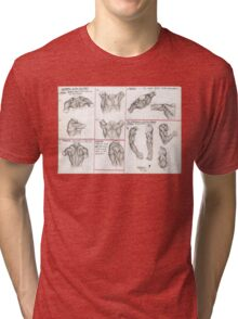 Human Anatomy 3 Tri-blend T-Shirt