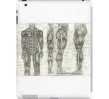 Human Anatomy 2 iPad Case/Skin