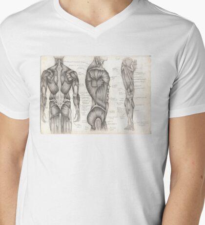 Human Anatomy 1 Mens V-Neck T-Shirt