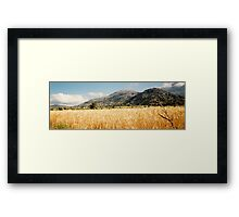 Cereal Field - Lasithi Framed Print