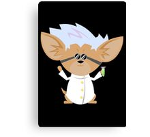 Honey The Mad Scientist! Canvas Print