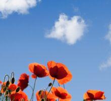Summer Poppy Meadow Sticker