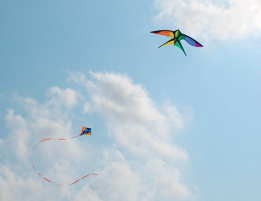 Two Kites in Sky by jojobob