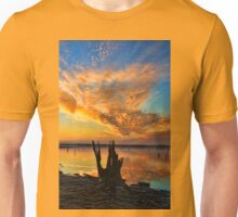 Reach For The Sky Unisex T-Shirt