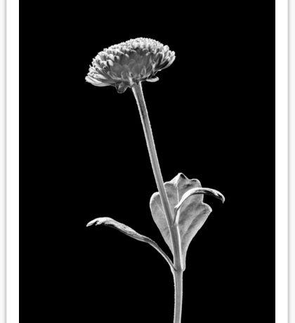Plant Form 122 Sticker