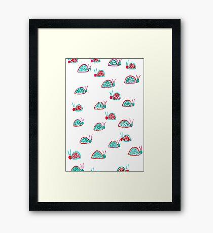 Ladybug. Framed Print