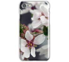 Spring Flower Series 58 iPhone Case/Skin