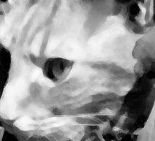 Tiny the cat Sticker