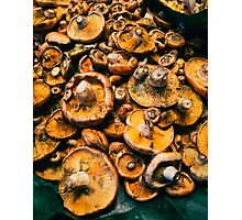 La Boqueria Mushrooms Photographic Print