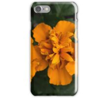 Spring Flower Series 62 iPhone Case/Skin