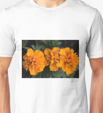 Spring Flower Series 62 Unisex T-Shirt