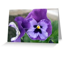 Spring Flower Series 65 Greeting Card
