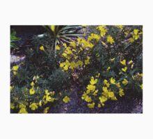 Longwood Gardens - Spring Series 137 Baby Tee