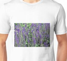 Longwood Gardens - Spring Series 145 Unisex T-Shirt