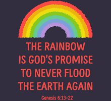 Rainbow God's Promise Genesis 6:13-22 T Shirt Womens Fitted T-Shirt