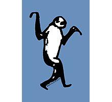 Man V Liver Sloth Photographic Print
