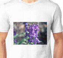 Longwood Gardens - Spring Series 163 Unisex T-Shirt