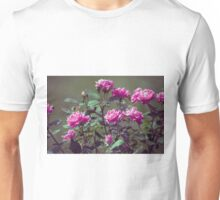 Longwood Gardens - Spring Series 171 Unisex T-Shirt