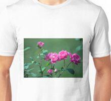 Longwood Gardens - Spring Series 172 Unisex T-Shirt