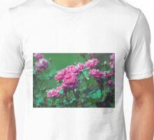 Longwood Gardens - Spring Series 173 Unisex T-Shirt