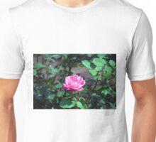 Longwood Gardens - Spring Series 178 Unisex T-Shirt