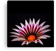 Big Kiss White Flame Flower Canvas Print