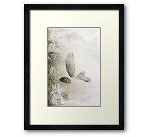 Four Feathers Framed Print