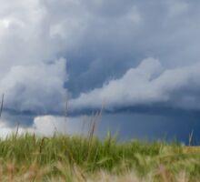 Prairie Storm Sticker