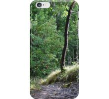 Pathway iPhone Case/Skin