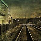 The Train to Georgia by Scott Mitchell