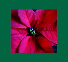Journey into Scarlet - Poinsettia Macro Womens Fitted T-Shirt
