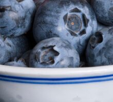 ~ Blueberries ~ Sticker