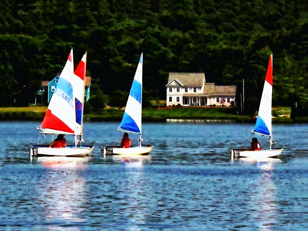 Striped Sails by Susan Savad