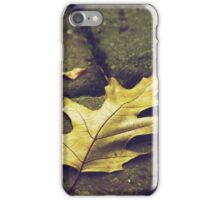 Leaf - on the pathway (2010) iPhone Case/Skin