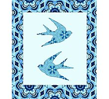 Blue Swallows Photographic Print