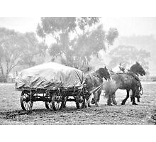 Wagon Team Photographic Print