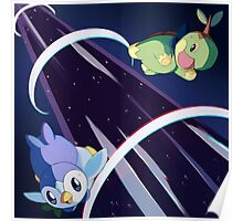 Piplup & Turtwig Against Time! Poster