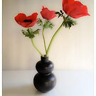 Red Anemones ~ Black Vase by Barbara Wyeth