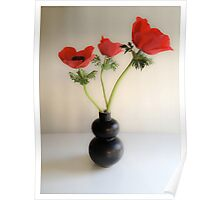 Red Anemones ~ Black Vase Poster