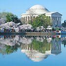 Washington DC Four Seasons by bkphoto