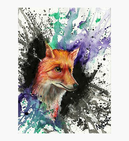 Fox of Many Colors Photographic Print