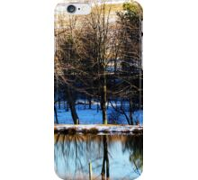 Pond - winter morning reflections (2012) iPhone Case/Skin