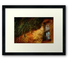 Window Grown Over Framed Print