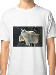 Two young wolves  Classic T-Shirt
