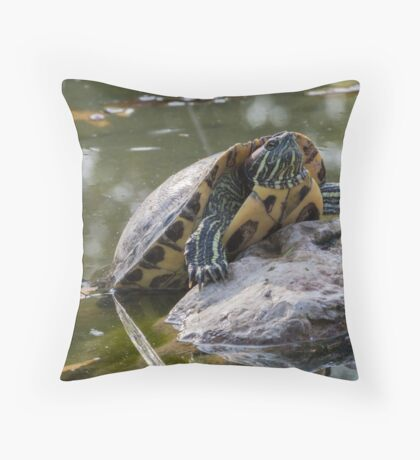 tortoise on lake Throw Pillow