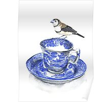High Tea Double Barred Finch Poster