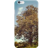 The Old Wise Tree iPhone Case/Skin