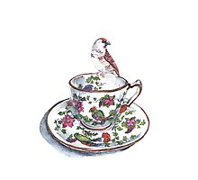High Tea Plum Headed Finch Photographic Print